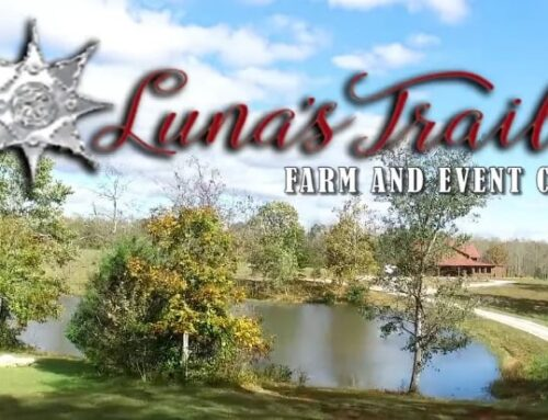 Luna's Trail North Carolina