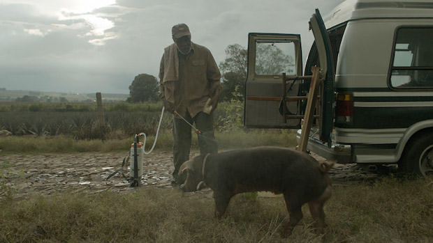 """That Feeling of Director's Guilt"": Director Diego Luna 